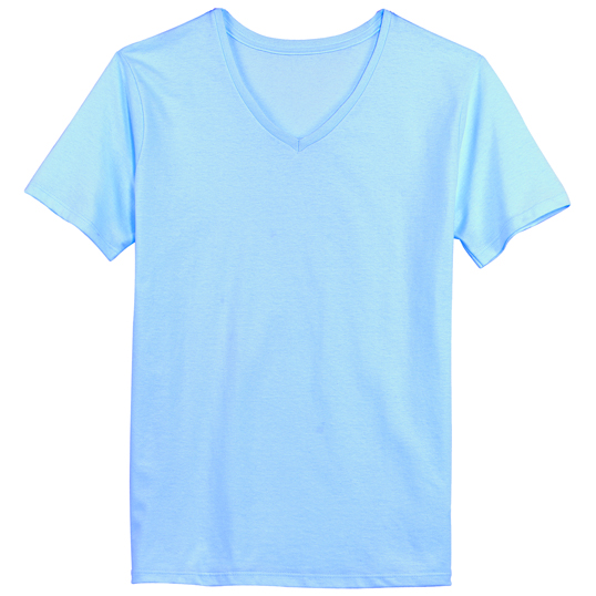6d1fa0a7 5780 Hanes Ladies ComfortSoft V-Neck T-Shirt | South by Sea